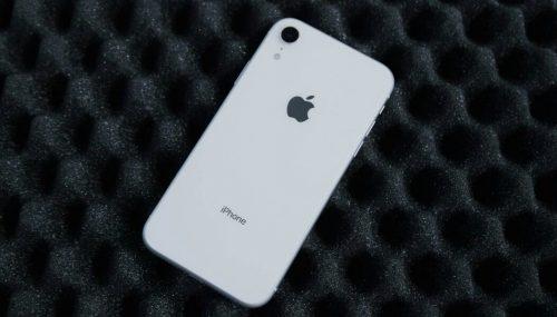 iPhone XR podría tener habilitado el Modo Retrato para mascotas